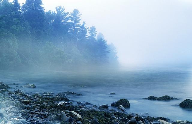 mist-1659115_1280