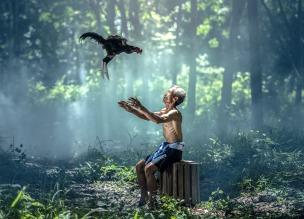 Photo by Ssasint, pixabay.com (https://pixabay.com/en/chicken-old-man-birds-wings-1822472/)