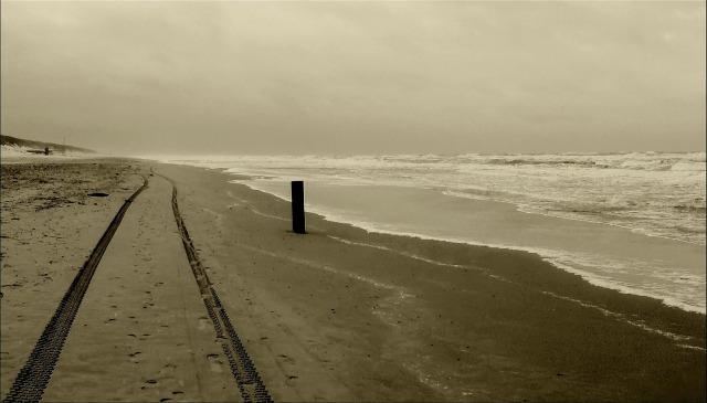 beach-371923_1920